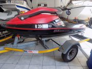 Sea-Doo 3D stand-up & sit-down jetski (D607)
